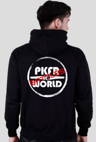 PKFR.WORLD Battles hoodie (White logo)