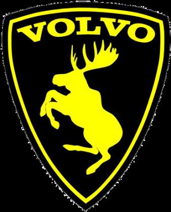 Bluza z kapturem Volvo Fan