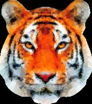 Tygrys tiger na koszulce