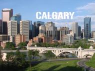 Bluza FullPrint męska 280g/m2 Calgary