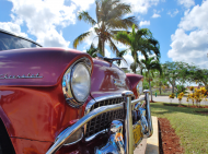 Mala poduszka jasiek full print Vintage American Car Palmy