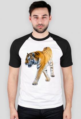 Koszulka z nadrukiem Prawdziwy Tygrys