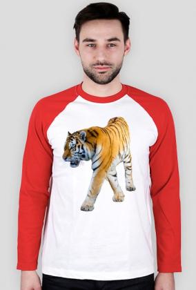 Bluza z nadrukiem Prawdziwy Tygrys