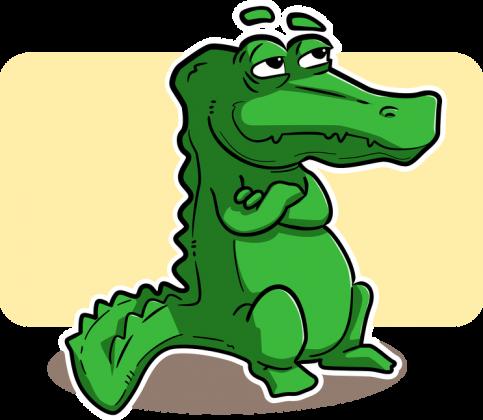 Bluza z nadrukiem Aligatorek