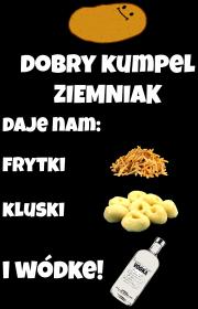 Ziemniak - Nasz przyjaciel