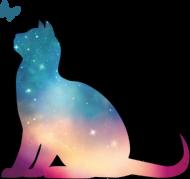 galaktyczny kot