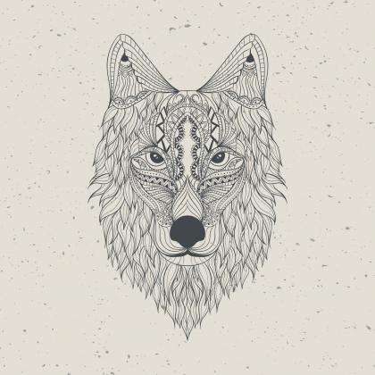 Bluza męska Wilk piaskowy