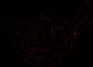 Podkoszulek Rose II