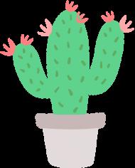 Kaktus - dziewczynka - boombom.pl