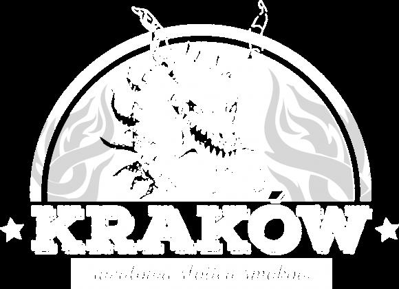 Koszulka Kraków Stolica Smoków - edycja specjalna