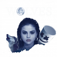 "Koszulka męska ""Wolves"""