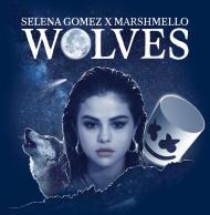 Przypinka - Wolves