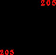 "PODUSZKA ""205"""