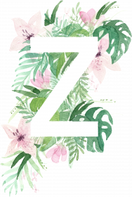 Z_dżungla