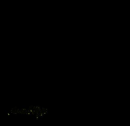 Owczarek