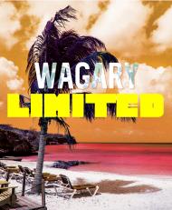 Bluza Wagary Limited