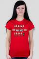 Pixel art – polska reprezentacja – koszulka kibicki