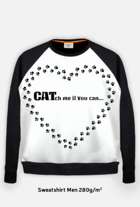 kot koty łapki cat cats serce heart