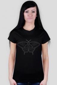 Motyl 01 - white