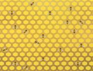 Maseczka lniana pszczoły ul