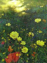Kwiaty burzowe komin