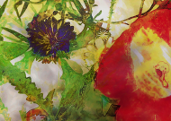 Kwiaty polskie plakat
