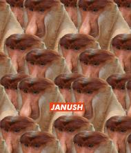 Janush Samsung Galaxy s8