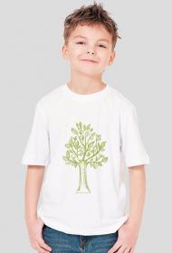 Drzewko koszulka dla chłopca, drzewo koszulka chłopięca