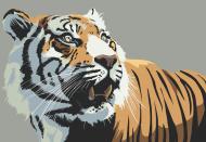 Oko tygrysa - Rośnij w siłę