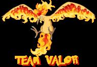 Koszulka Pokemon - Team Valor