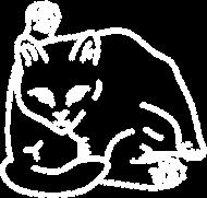 Koszulka damska z rysunkiem kota
