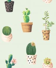 Kaktusy 2 - kubek
