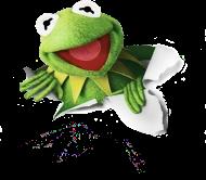Mapety Kermit Koszulka Damska różne wzory