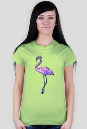 Flamingo galaxy