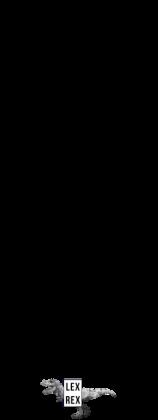 Paragraf - Poduszka - LexRex