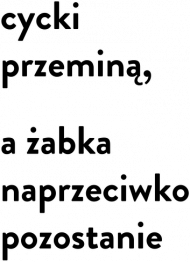 Koszulka Żabka