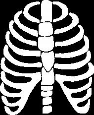 Bluza Skeleton Ribs