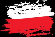 Męska Bluza z Kapturem Flaga
