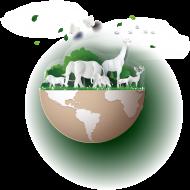 ekotorba dzień ziemi
