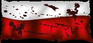 Kubek z flagą Polski