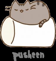 "Chłopięcy T-shirt ""Pusheen"" Wzór 4"