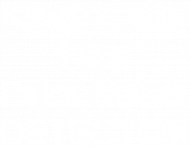 Fake news detector