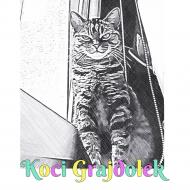 Koci Grajdołek 4 Koszulka Chłopięca