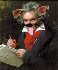 #wiedeńskiteam - Jeden z... -Beethoven