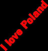 Bluza Pol1