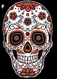 Koszulki damskie z czaszkami - Kolorowa czaszka