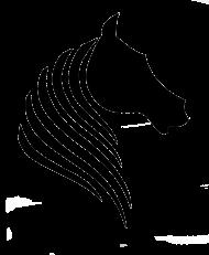 T-shirt z koniem - męski