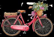 Koszulka rower - męska
