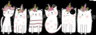 Bluza w jednorożce-koty - damska