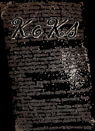 Koszulka KoKs Tekst